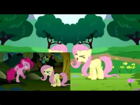 Equestria Daily - MLP Stuff!: Fluttershy Day Music!