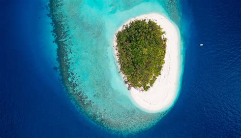 3D Printing Supports Coral Reef Ecosystem in Maldives